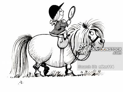 animals-little_fat_ponies-little_fat_pony-pony-horse-riding_lesson-nthn114_low.jpg